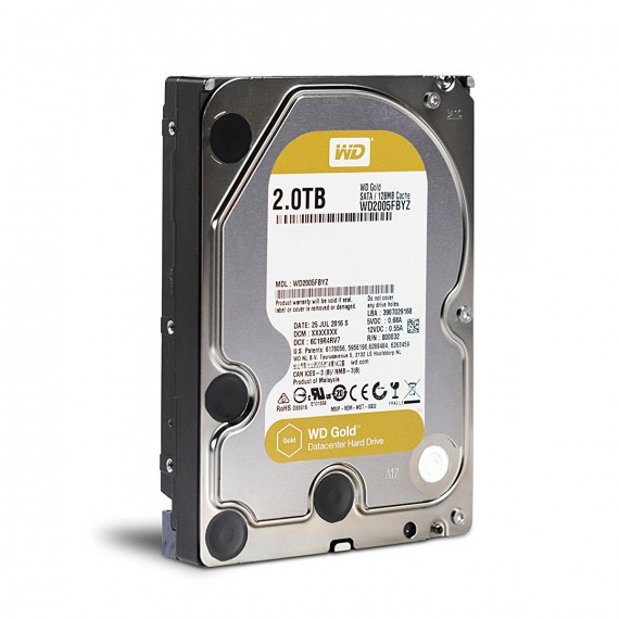 WESTERN DIGITAL GOLD 2 TO