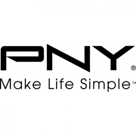 PNY 2way 2slot NVLink Bridge