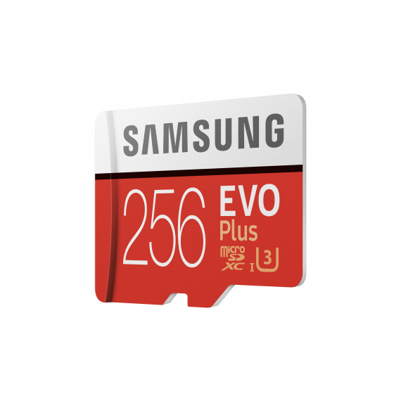 SAMSUNG Micro SDXC 256Go UHS-I C10 MB-MC256GA/EU
